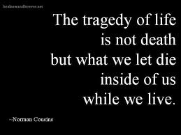 The Tragedy of Life Quote