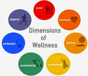 wellnessgraphic-2